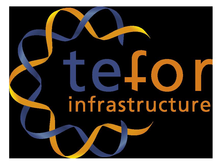 Premium sponsor : TEFOR